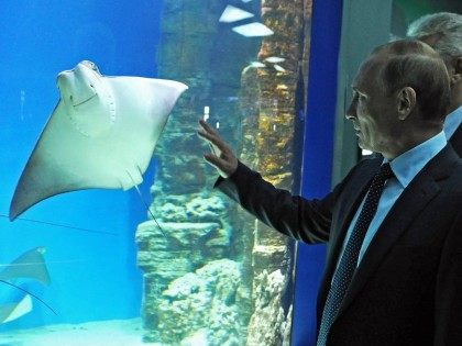 Manta Putin (Mikhail Klementyev / AFP / Getty)