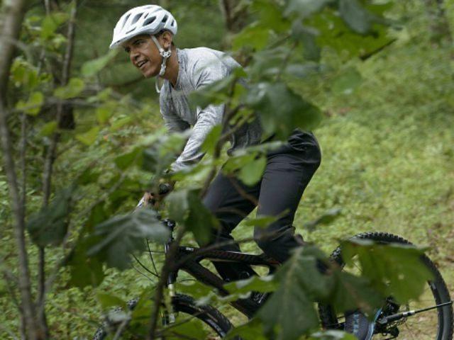 President Barack Obama rides a bike on August 22, 2015 in Vineyard Haven, Massachusetts on Martha's Vineyard. AFP PHOTO/BRENDAN SMIALOWSKI (Photo credit should read