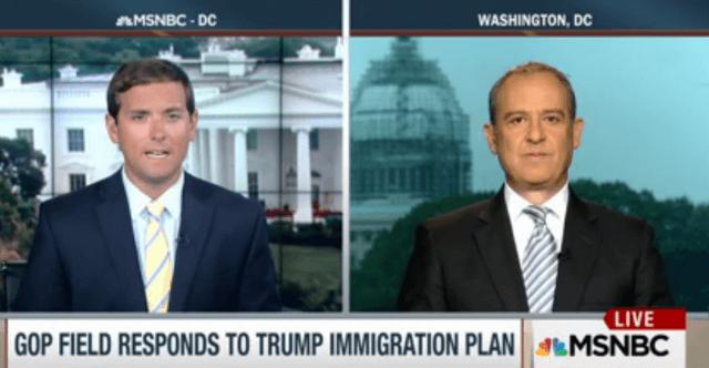 MSNBC Screenshot: Mexico's Fmr. Ambassador to US