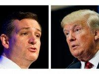 NY Mag: Ted Cruz the Only GOP Candidate Who Knows How to Handle Donald Trump