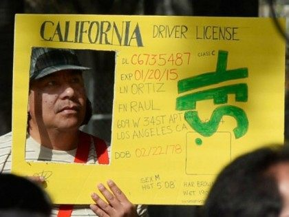Raul Ortega holds a sign as he celebrates after California Governor Jerry Brown signed bill AB60 on the steps of Los Angeles City Hall October 3, 2013 in Los Angeles, California. California Assembly Bill 60 also known as the Safe and Responsible Driver Act allows illegal immigrants to receive a …