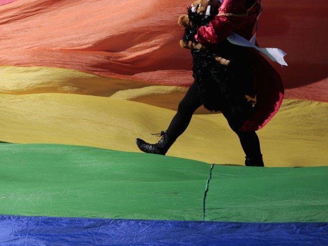 Gay Mexico (Pedro Pardo / AFP : Getty)