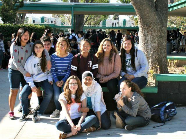 Granada Hills High School Diversity AP