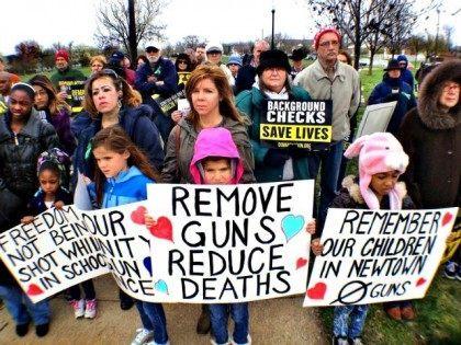 Gun Control Rally