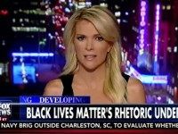 Megyn Kelly Blasts 'Double Standard' Over Treatment Of Black Lives Matter Movement, Tea Party
