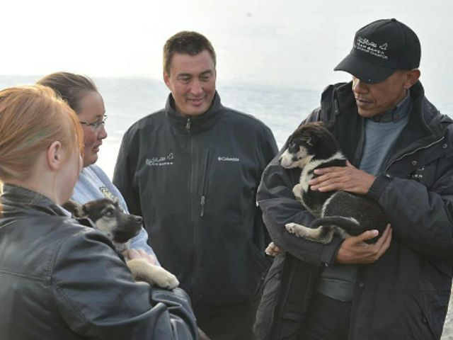 US President Barack Obama holds a puppy beloing to musher John Baker (C) in Kotzebue, Alaska on September 2, 2015. AFP PHOTO/MANDEL NGAN (Photo credit should read