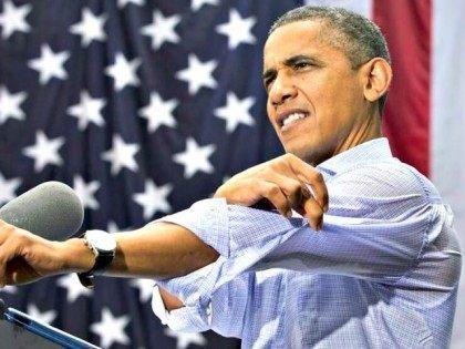 Obama Sleeve AP