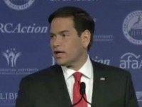 Website Exposing Marco 'Amnesty' Rubio Goes Live: A 'Donor Class Puppet'?