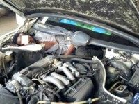 Spanish Guards Find Two Migrants in a Car Engine