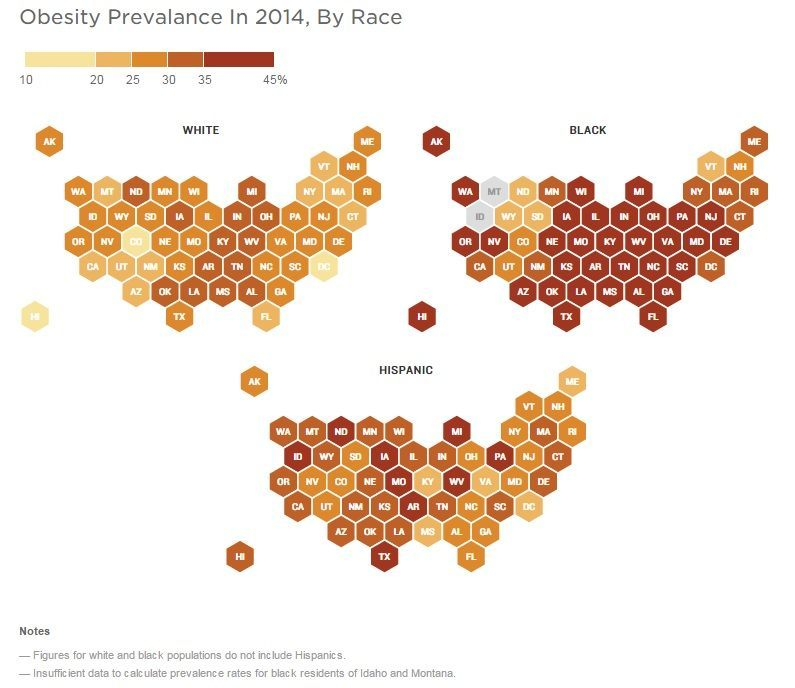 CDC Data Show Staggering Obesity Rates Among Ethnic Groups Breitbart - Obesity map us