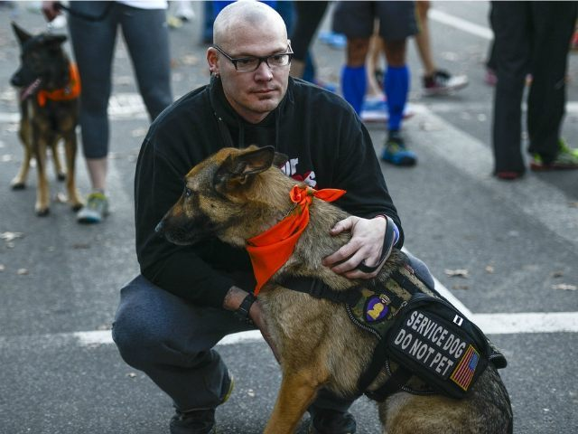American Airlines Tells Veteran With Ptsd That Service Dog