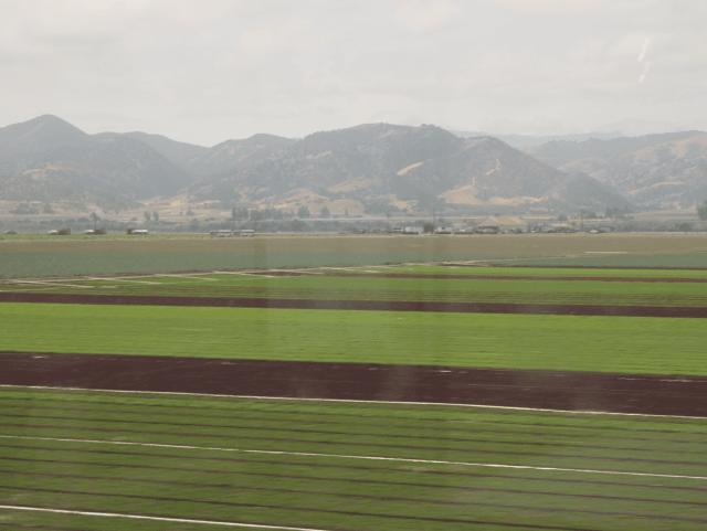 California fields (Joel Pollak / Breitbart News)
