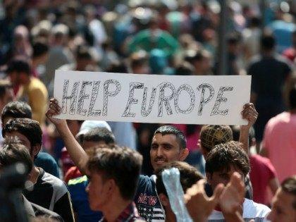 germany migrants