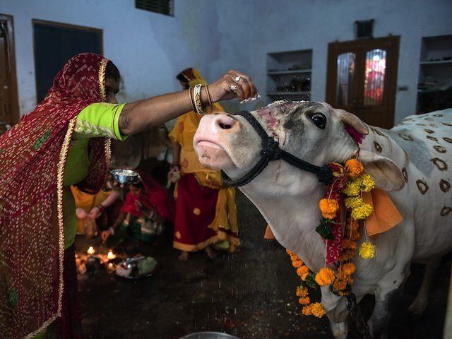 INDIA-RELIGION-HINDU