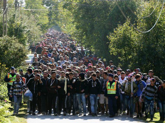 new migrants