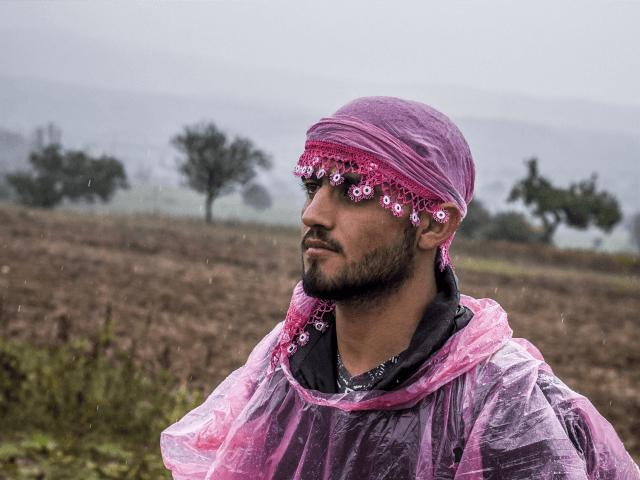 Cowardly Migrants