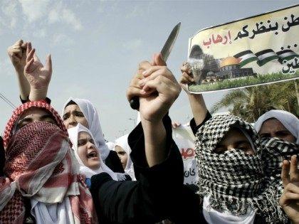 EU Aid To Palestinians