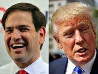 Rubio and Trump AP