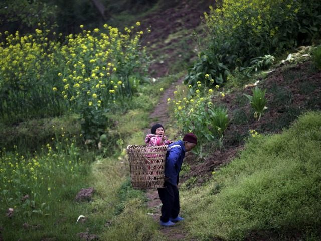 Chinese-woman-carries-child-in-basket-ap