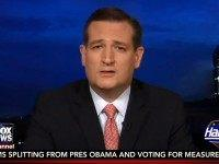 Cruz: Media 'Desperately' Hopes Mass Killers Are Republicans, Dems 'Overwhelming Majority of Violent Criminals'