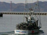 Fishing vessel San Francisco (Justin Sullivan / Getty)