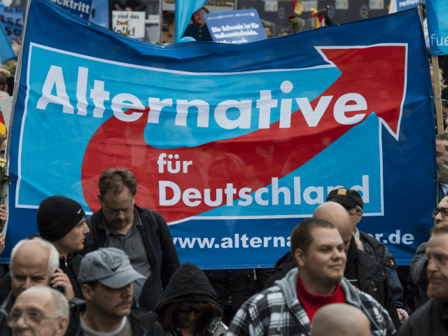 German UKIP afd