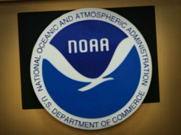 noaa american meteorological society