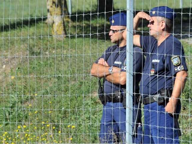 hungarian police detain british citizens
