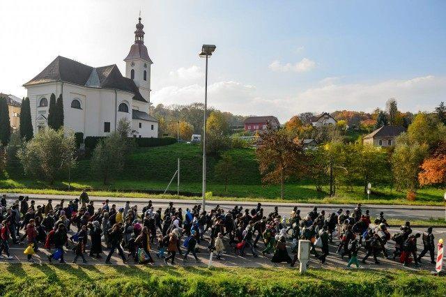 austria's population