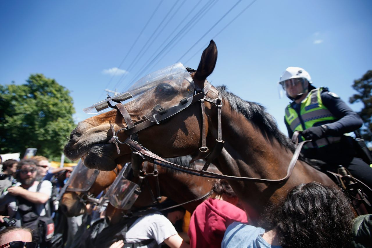 A counter-protester was arrested after allegedly punching a horse (Darrian Traynor/Getty Images)