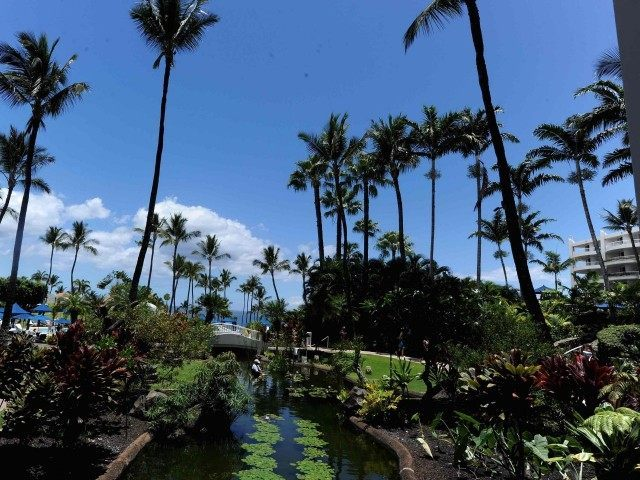 Kea Lani resort, Maui (Michael Buckner / Getty)