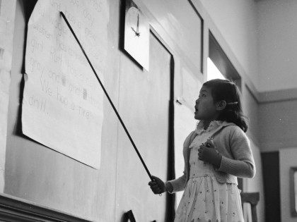 Schoolgirl 1955 (Orlando / Hulton Archive / Getty)