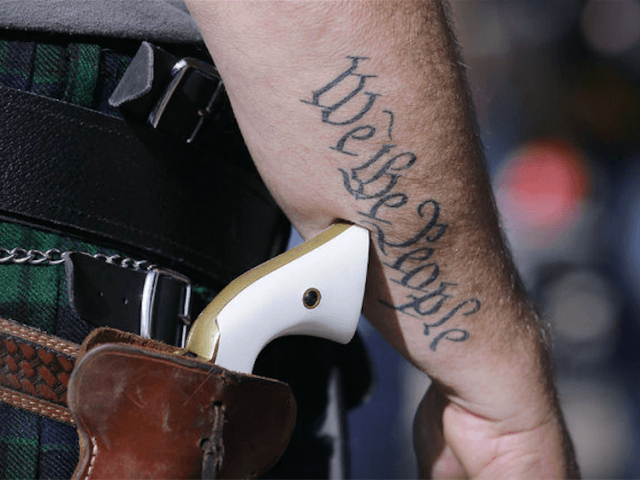 Gun We the People (Peter Stevens / Flickr / CC / Cropped)