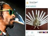 GRATITUDE: Snoop Dogg Celebrates Thanksgiving with Weed Turkey