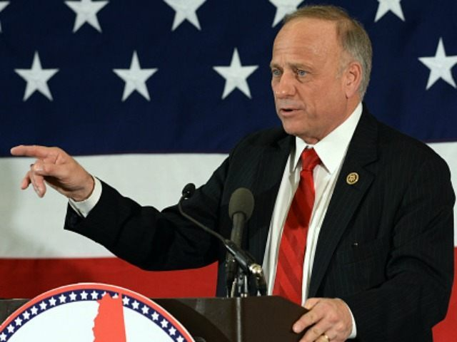 Rep. Steve King (R-IA) speaks at the First in the Nation Republican Leadership Summit April 17, 2015 in Nashua, New Hampshire.
