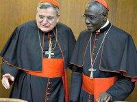 Two Cardinals AP PhotoAndrew Medichini