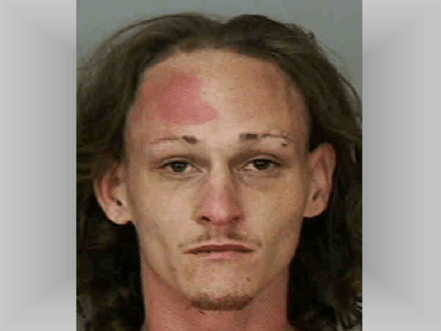 florida man kills father with hammer