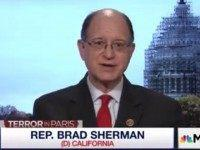 Dem Rep Sherman: Obama's 'Zero Civilian Casualty' Approach Won't Beat Islamic State