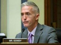 Trey Gowdy Voices Support of Bump Stock Ban After Florida School Shooting