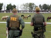Drug Raid Horse Track
