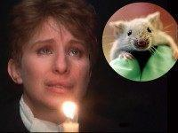 Barbra-Streisand-Lab-Mouse