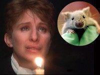 Barbra-Streisand-Lab-Mouse