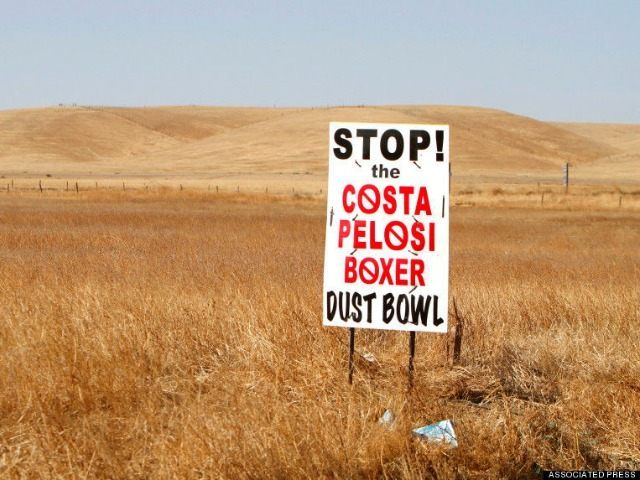 in Firebaugh, Calif., Thursday, Oct. 14, 2010. (AP Photo/Rich Pedroncelli)