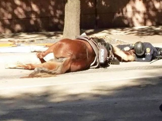 Charlotte Comforted by her Rider before death