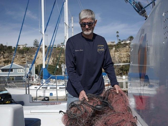 Entangled whale net (Christine Armario / Associated Press)