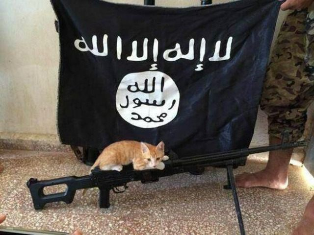 Join Islamic state