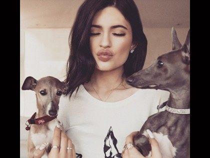 Kylie-Jenner-Dogs-Instagram
