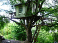 Airbnb treehouse (Airnbnb)