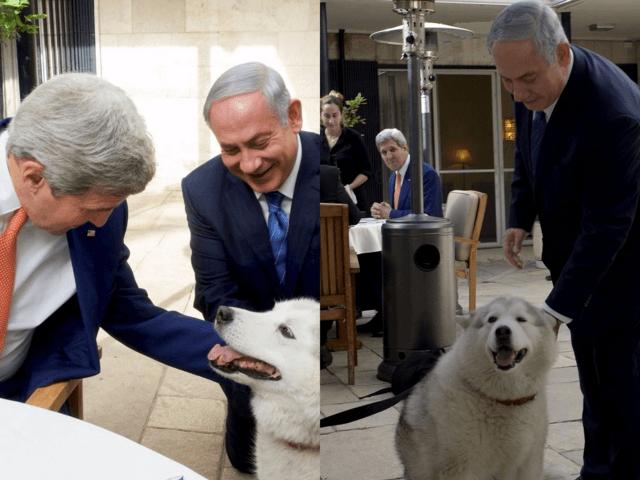 Netanyahu dog bites