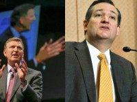 Ted Cruz (Saul Loeb, AFPGetty Images